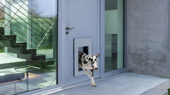 Passive House Doors for Pets
